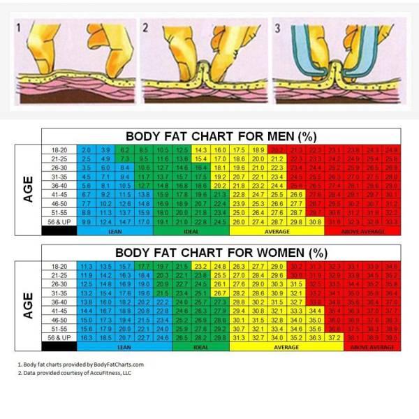 tabela tkanka tłuszczowa